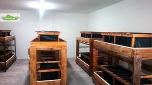 strutture-stanza-legno